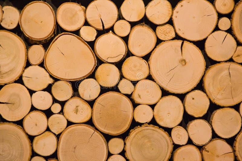 Klipp dekorativ bakgrund för trädjournaler arkivbilder