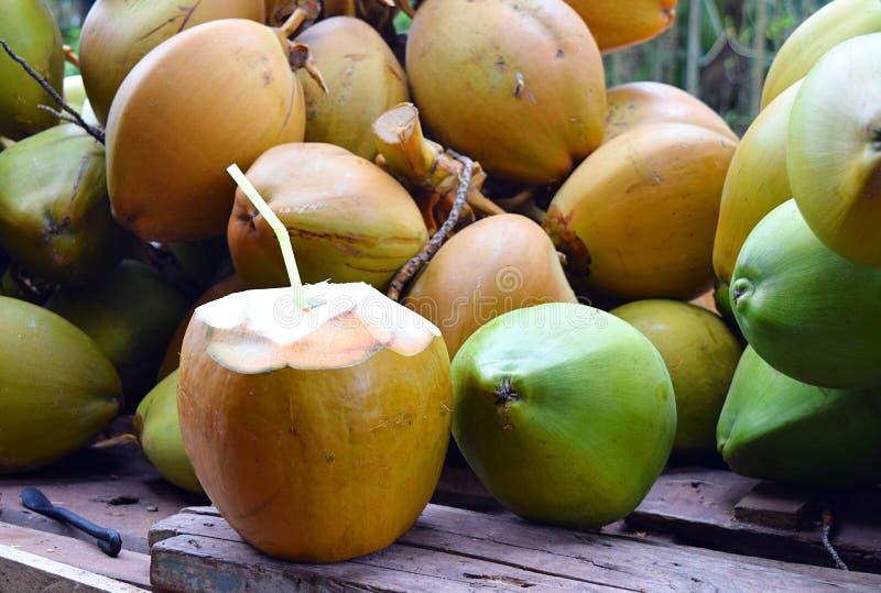 Klipp den öppna anbudgräsplankokosnöten med inre sugrör och gruppen av kokosnötter - sund naturlig dryck - den näringsrika Detoxd royaltyfria bilder