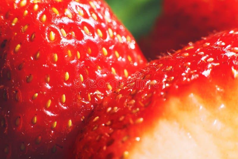 klipp den half jordgubben Jordgubbek?rna royaltyfria foton