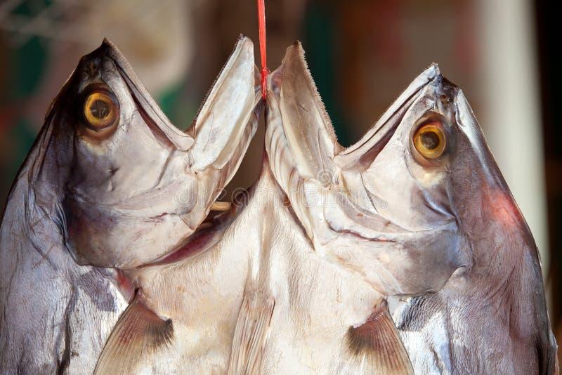 Download Klipp fiskmarkören fotografering för bildbyråer. Bild av meat - 19792537