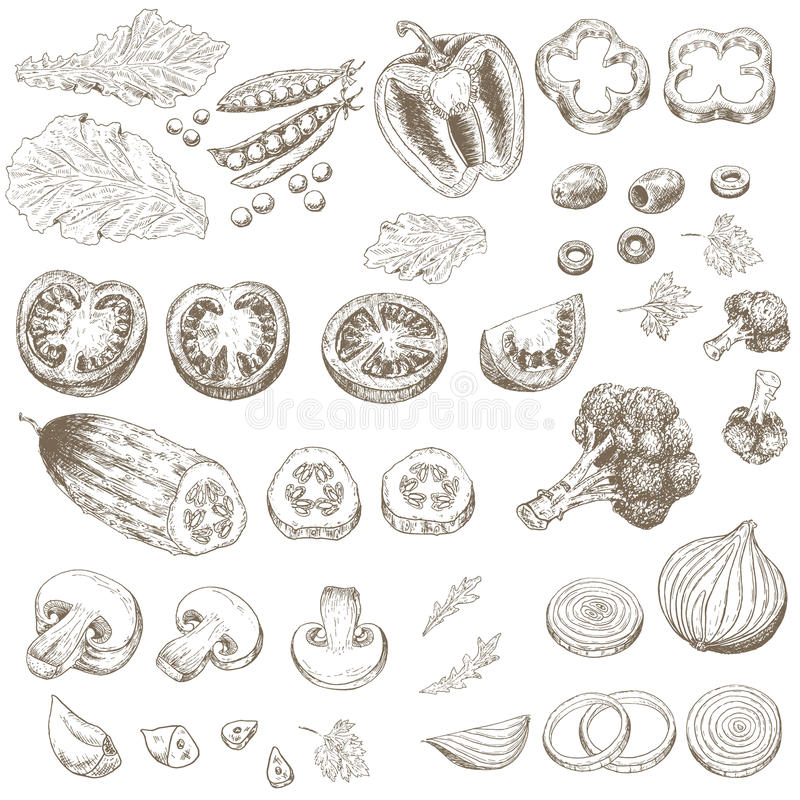 klipp grönsaker stock illustrationer