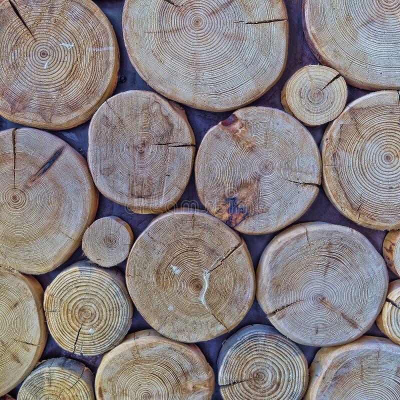 Klipp journaler, wood bakgrund royaltyfri fotografi
