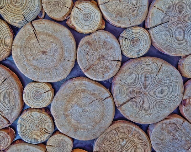 Klipp journaler, wood bakgrund royaltyfria bilder