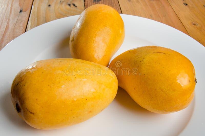 klipp skivade kvinnan för fruktfruktmango uppvisningen arkivfoton