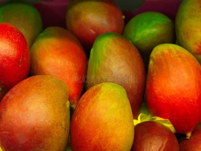 klipp skivade kvinnan f?r fruktfruktmango uppvisningen royaltyfri bild