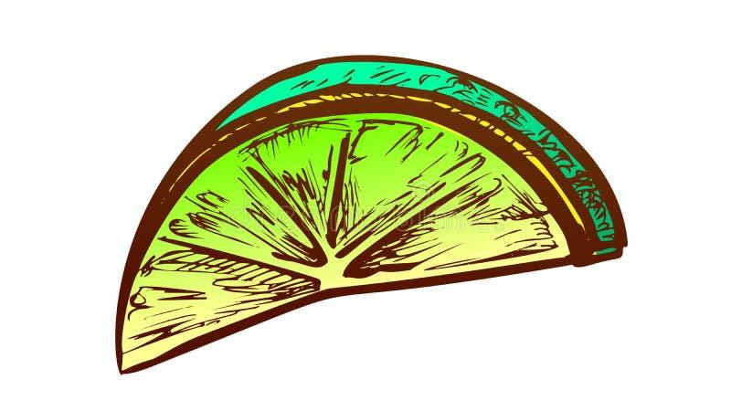 Klipp ut segmentfärgvektor för citrusfrukter, exotisk citrus vektor illustrationer