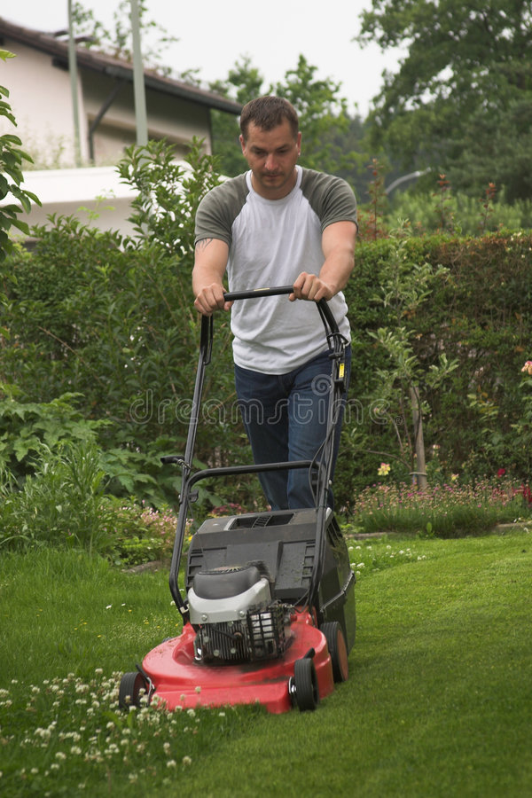 klippa gräs royaltyfria foton