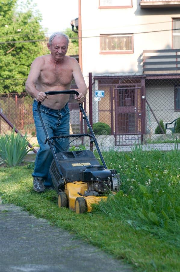klippa gräsmangräsklippningsmaskinen arkivfoto