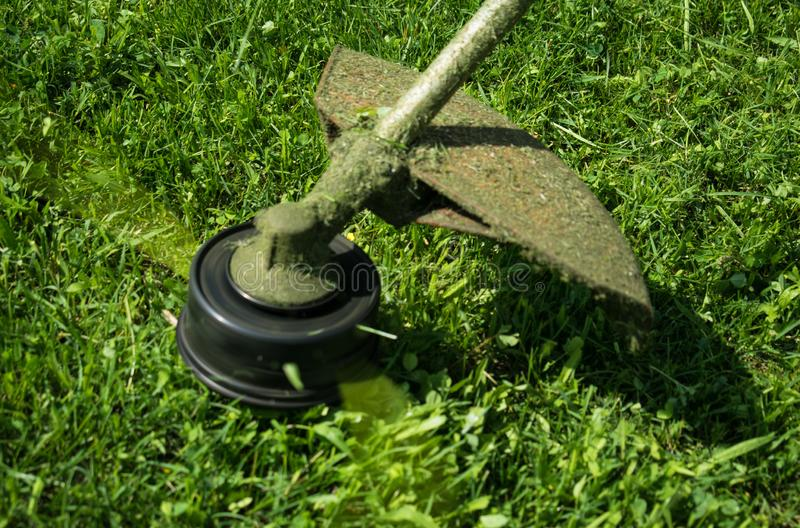 Klippa gräsmattan med den mekaniska gräsklippningsmaskinen arkivbild