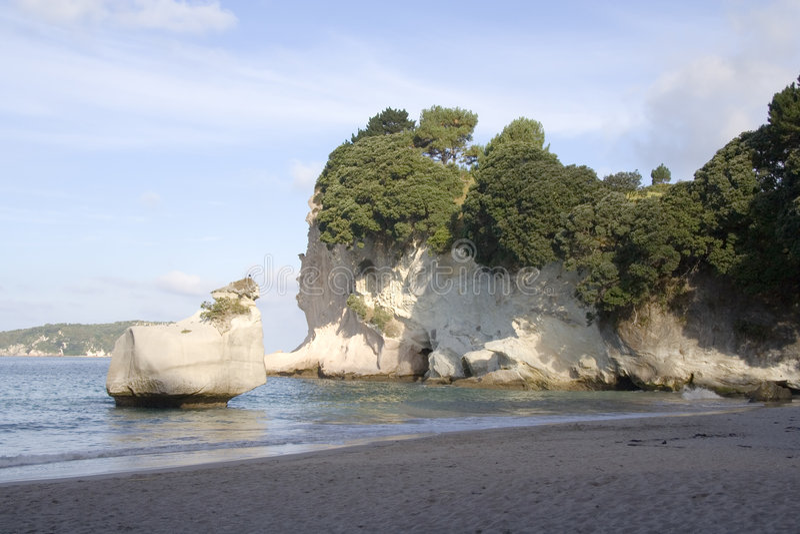klippacoromandelcove New Zealand royaltyfri bild