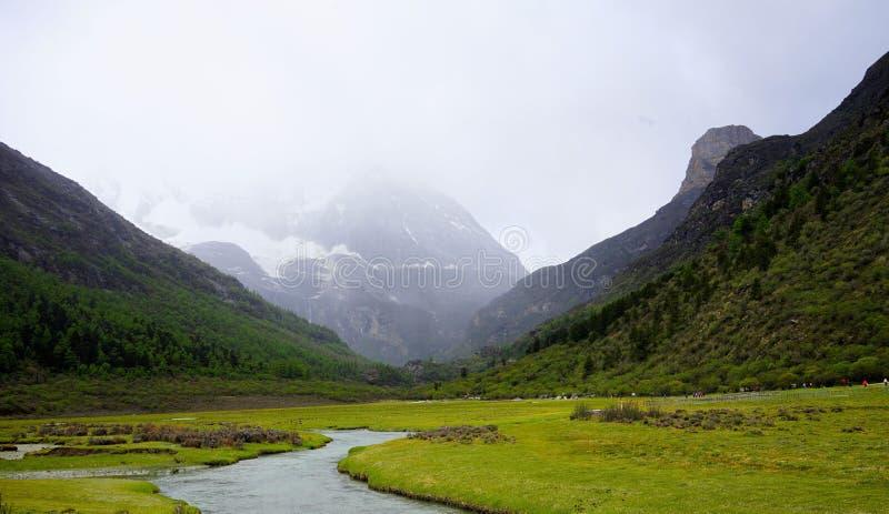 Klippaframsidan var en dimmig droppe, den slingrade lilla floden arkivbilder