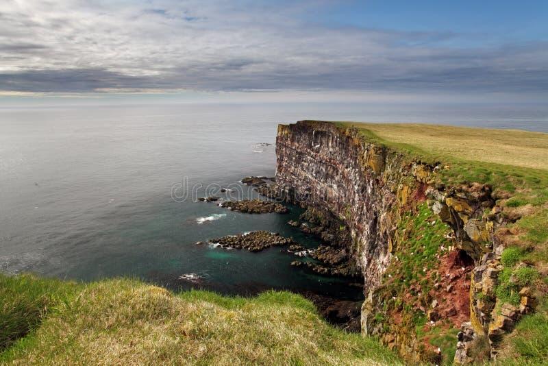 Klippe in Island - latrabjarg stockbild