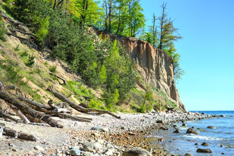 Klippe von Orlowo in Ostsee, Polen stockfotos