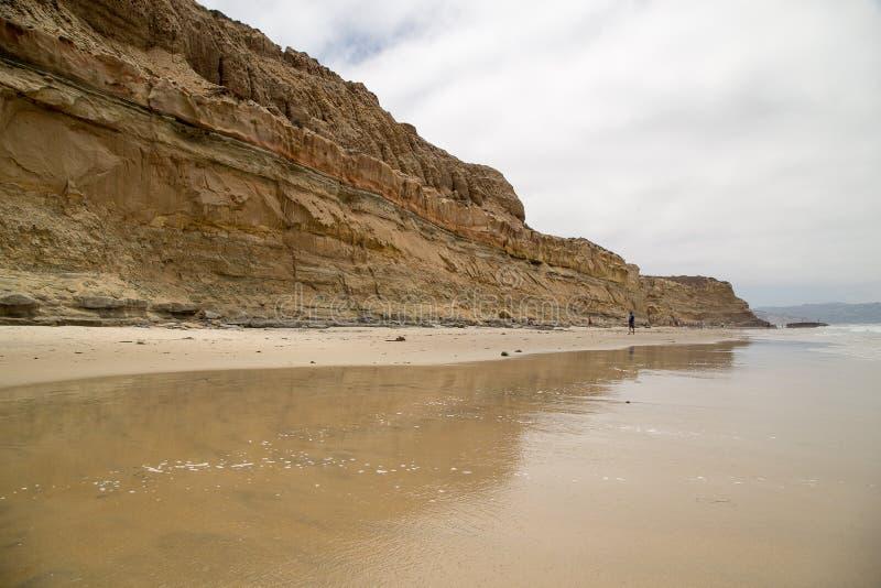 Klippen en strand in Torrey Pines State Natural Reserve royalty-vrije stock afbeeldingen