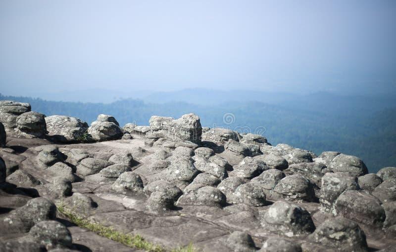 Klippen met rotsen en bosmeningen royalty-vrije stock afbeeldingen