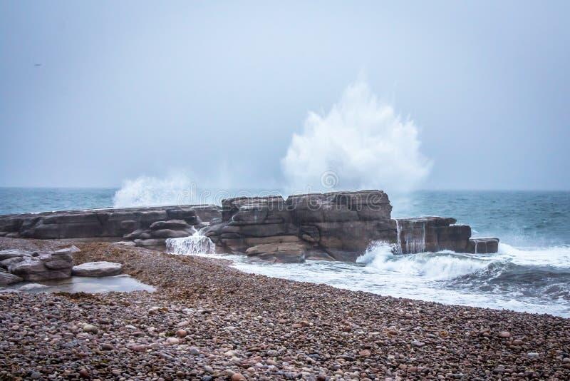 Klippen van Nova Scotia, Canada De Atlantische Oceaan, Rotsen royalty-vrije stock afbeelding