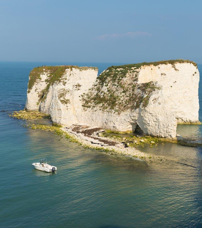 Klippor för UK-kustkrita Studland Dorset södra England UK fotografering för bildbyråer