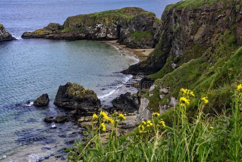 Klippor längs jättevägbanken som är nordlig - Irland arkivbild
