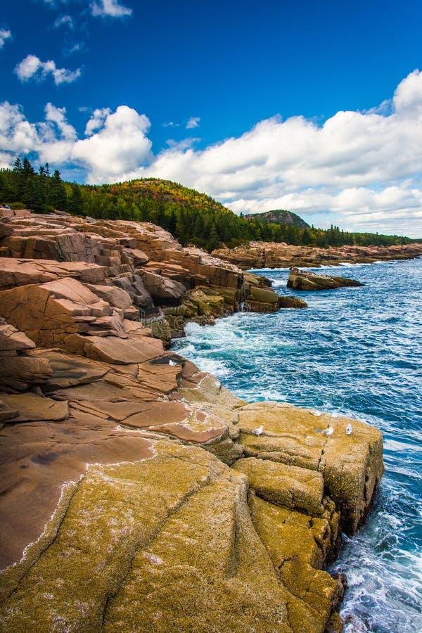 Klippor och Atlanticet Ocean i Acadianationalparken, Maine fotografering för bildbyråer