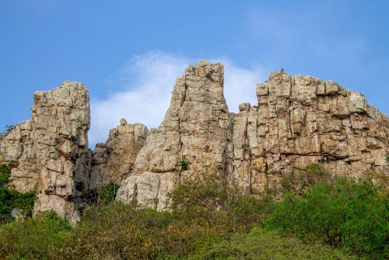 Klipporna i den stora skogen arkivfoto