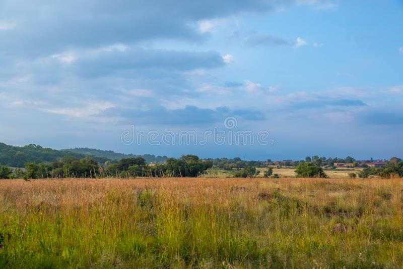 Klipriviersbergnatuurreservaat, Johannesburg, Gauteng, Zuid-Afrika stock afbeeldingen