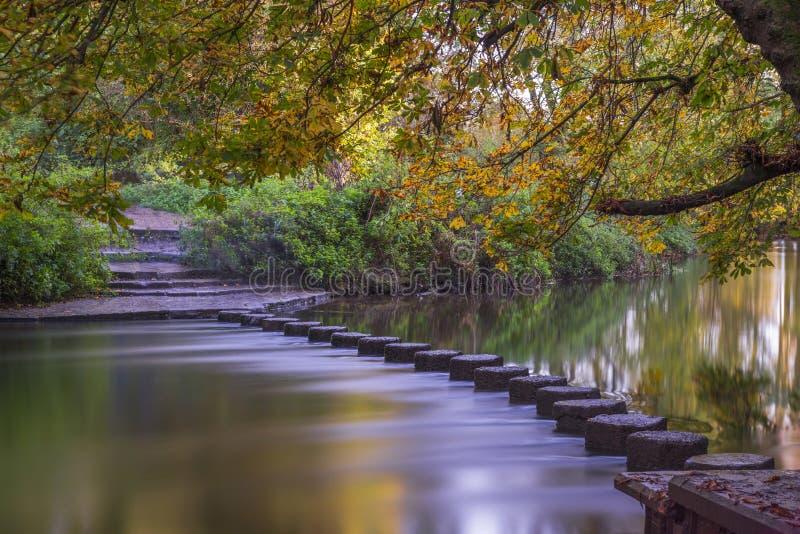Kliva stenar över flodvågbrytaren, Surrey, UK arkivbild