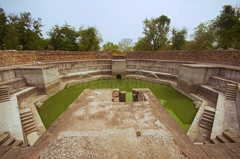 Kliva väl, lokaliserat på Jami Masjid Mosque, UNESCO skyddade Champaner - arkeologiska Pavagadh parkerar, Gujarat, Indien arkivfoto