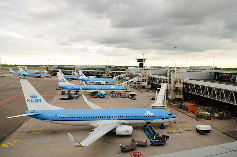KLM planes at Schiphol royalty free stock photo