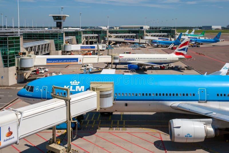 KLM Schiphol flygplatsport royaltyfria foton