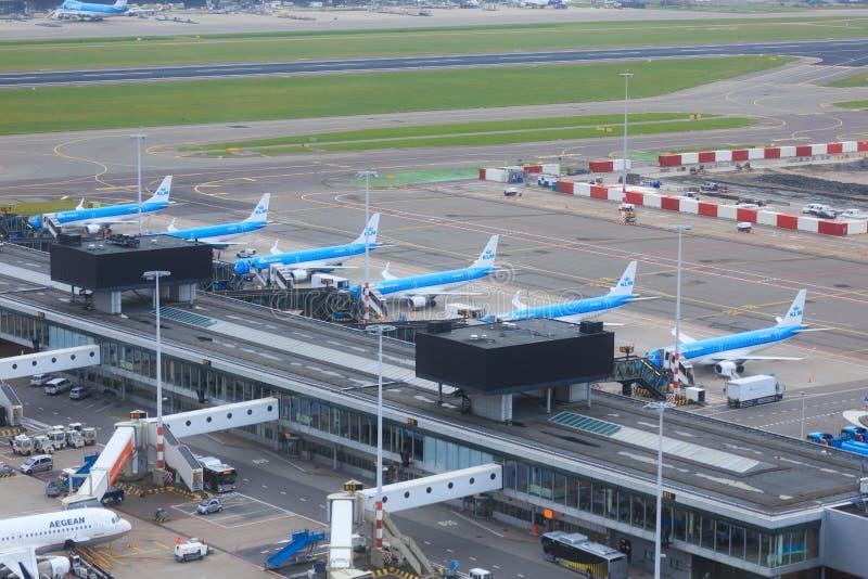 KLM strålar som parkeras på Schiphol royaltyfria foton