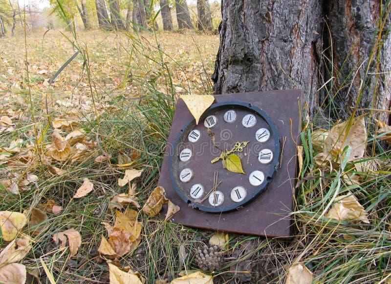 Download Klocka förlorat gammalt fotografering för bildbyråer. Bild av tree - 275999
