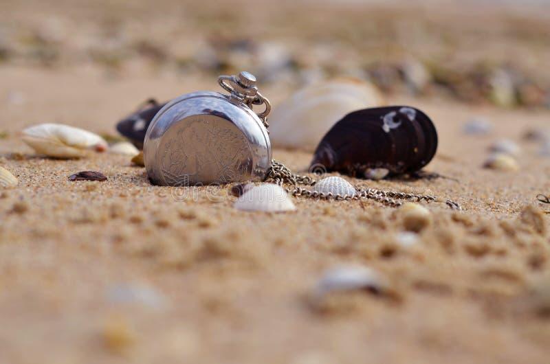 klockor och snäckskal på sanden arkivbilder