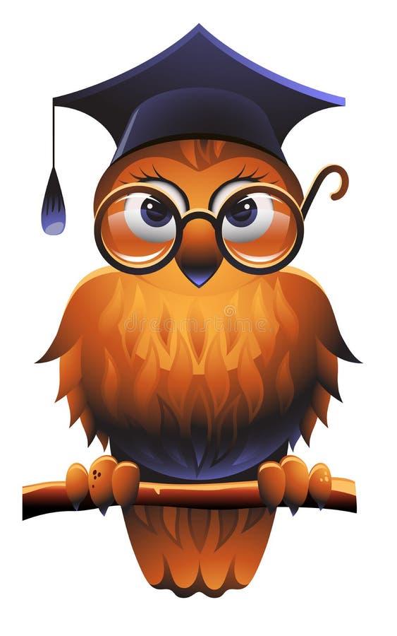 klok owl