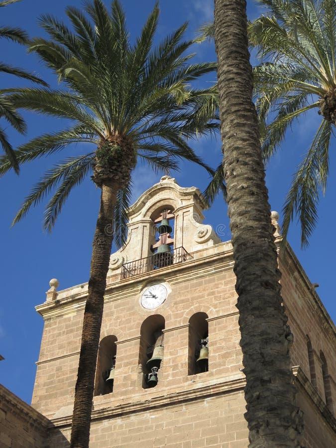 Klokketoren door lange palmen wordt gezien die stock afbeelding
