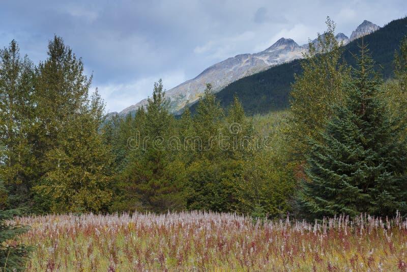 Klondike gold rush Historical park. Skagway Alaska royalty free stock photo