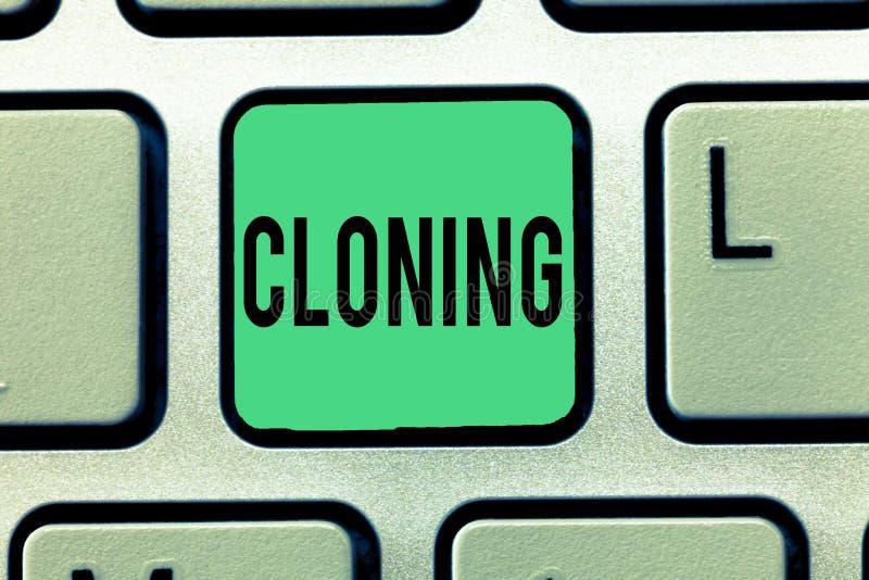 Kloning för textteckenvisning Det begreppsmässiga fotoet gör identiska kopior av någon eller något som skapar klon arkivbild