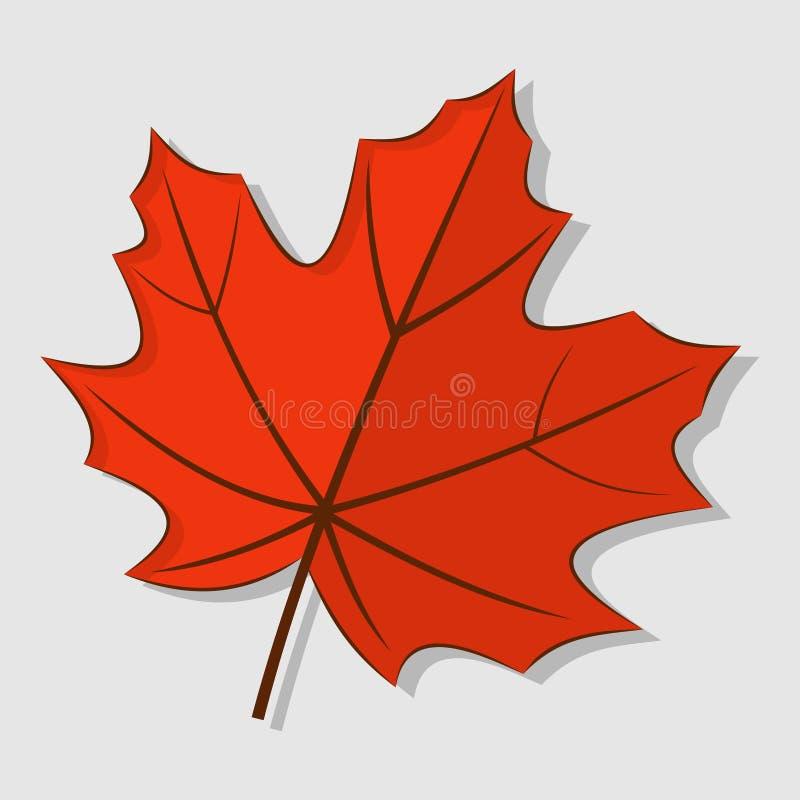 Klonowy jesień liść odizolowywający na białym tle ilustracja wektor