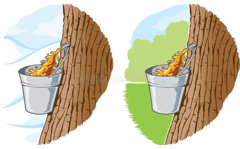 Klonowy syrop ilustracja wektor