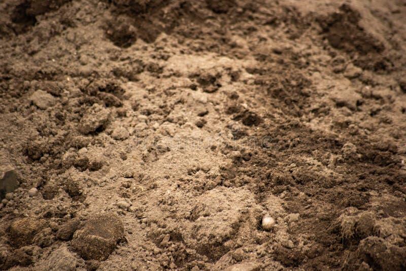 Klonters van grond in de opgegraven oppervlakte royalty-vrije stock foto