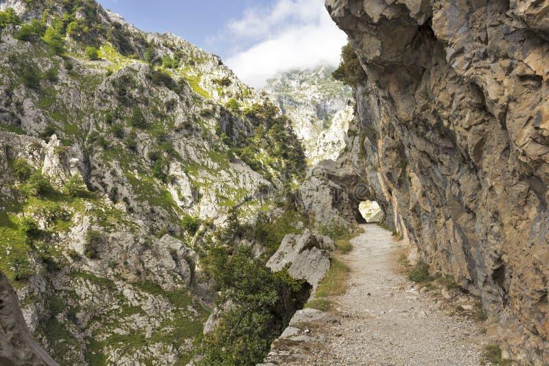 Kloof van Rivierzorgen in Asturias royalty-vrije stock foto's