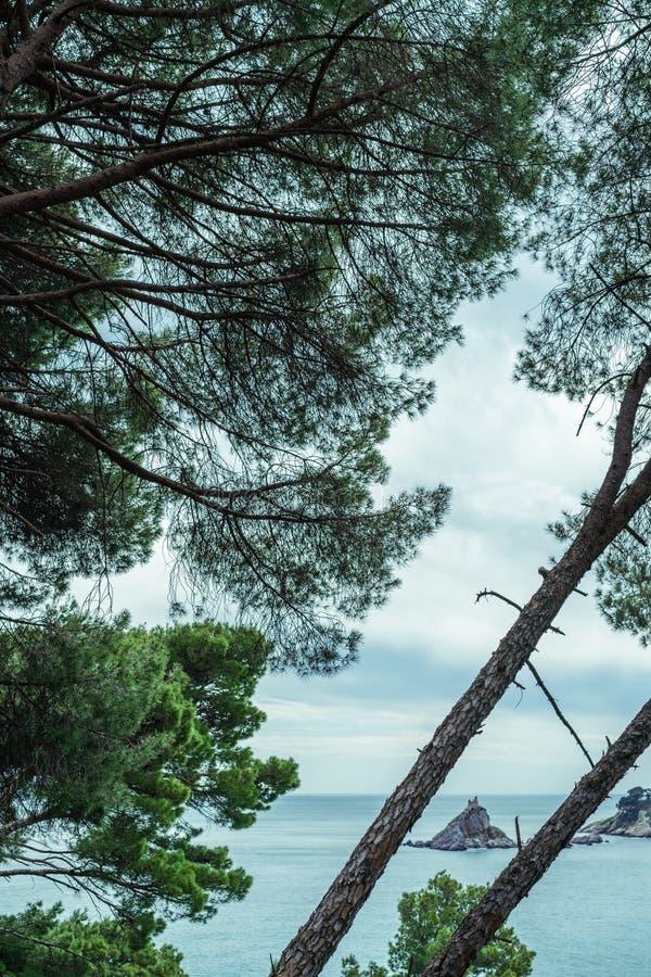 Klooster op de rots in het overzees royalty-vrije stock foto