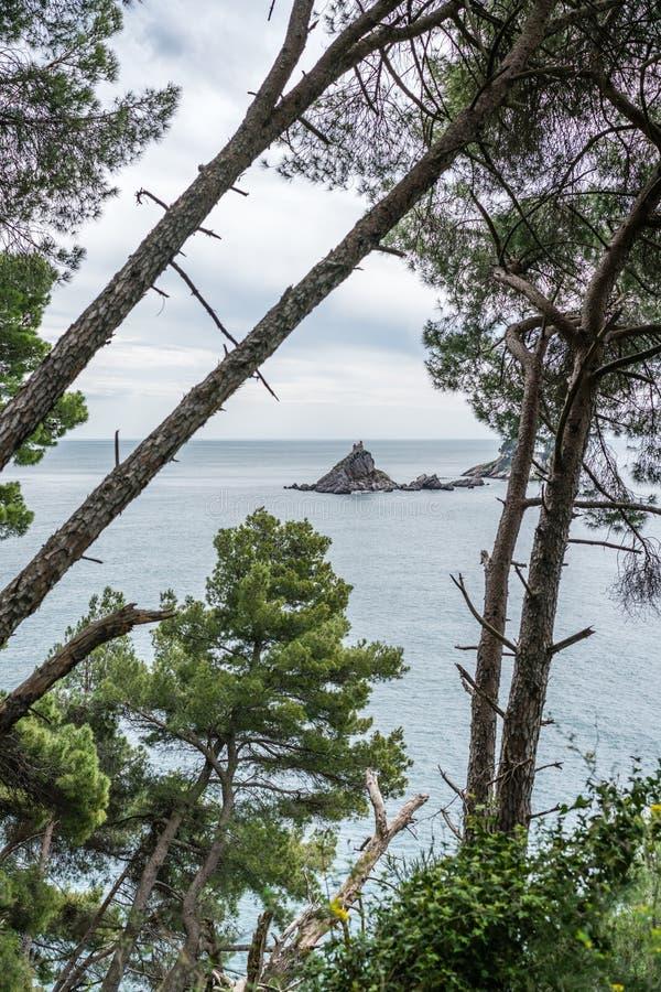 Klooster op de rots in het overzees stock foto's