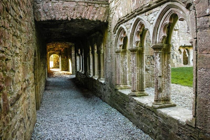 Kloster bective abbey klippning ståndsmässiga Meath ireland arkivfoton
