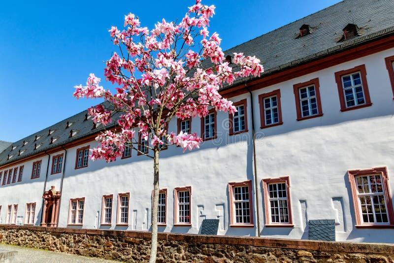 Kloster Eberbach, κοντά σε Eltville AM Ρήνος - απόκρυφη κληρονομιά των κιστερκιανών μοναχών σε Rheingau, Hesse, Γερμανία στοκ εικόνες