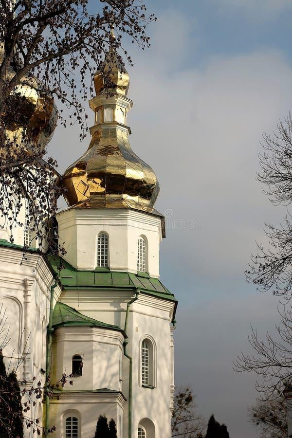 Kloster Gustynsky för helig Treenighet royaltyfri fotografi