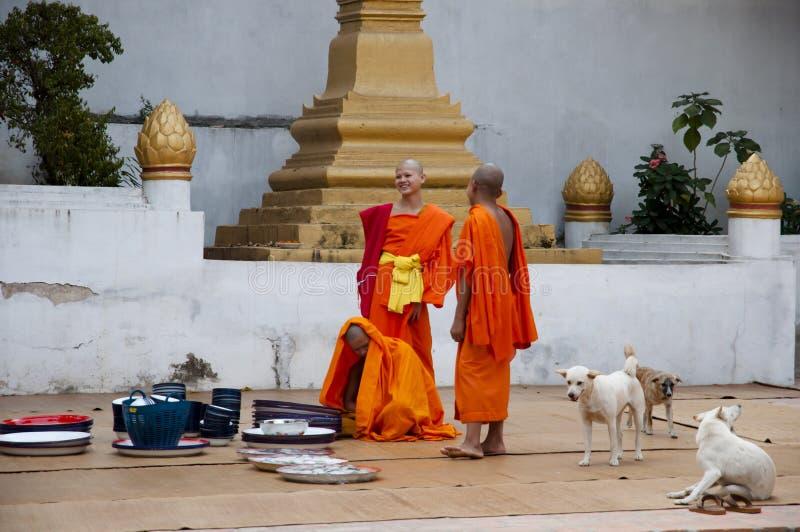 Kloster - Laos royaltyfria bilder