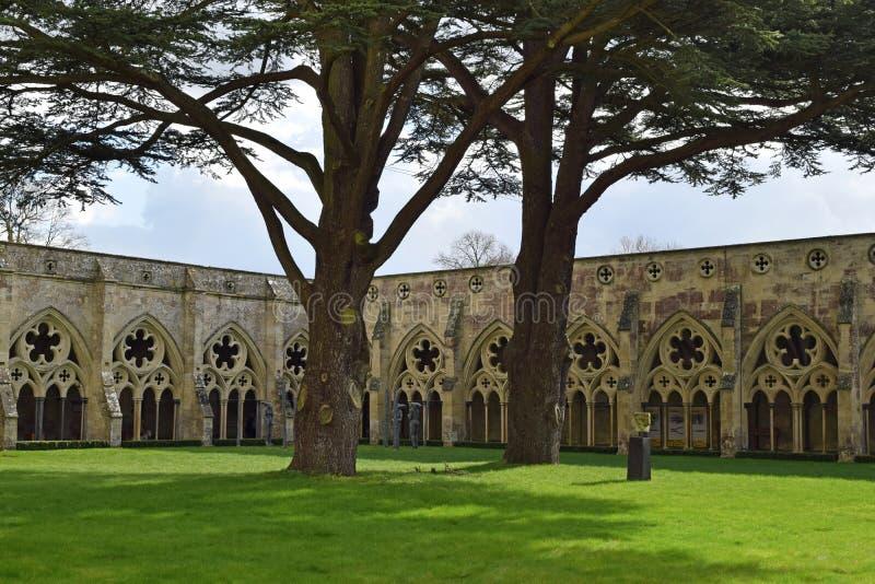 Kloster Salisbury domkyrka, Salisbury, Wiltshire, England royaltyfri foto