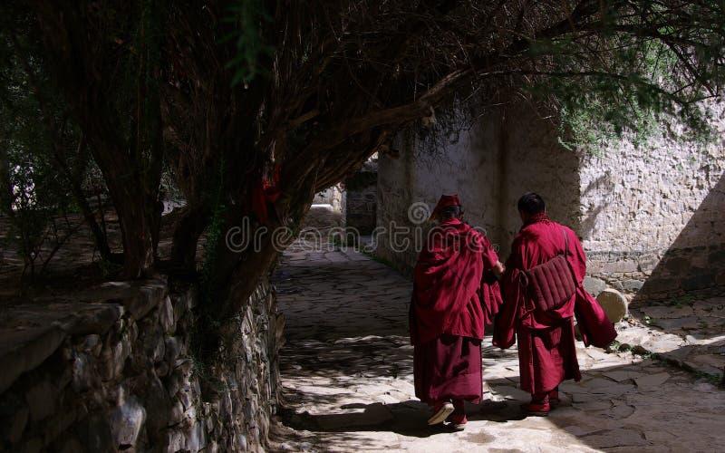 klostertashilhunpo arkivfoton