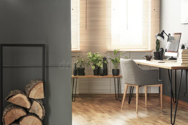 Klotz des Holzes und der Anlagen im hellen Innenministeriuminnenraum mit Grau stockfoto