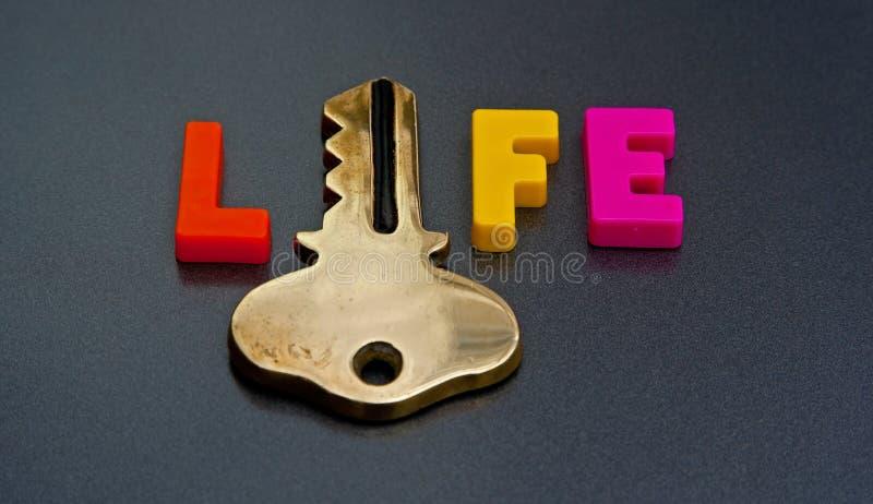 Klucz życie obrazy stock